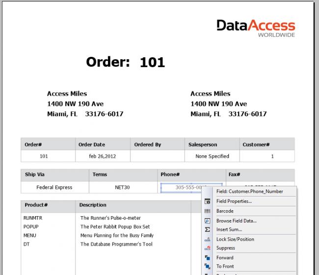 DF_Reports_relatório de exemplo 1