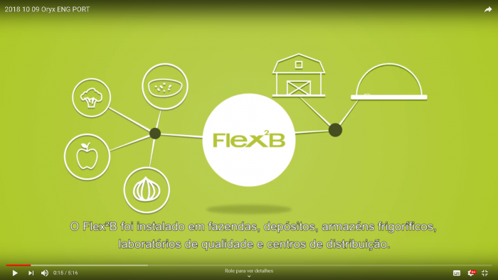 Flex2B video legendado BR