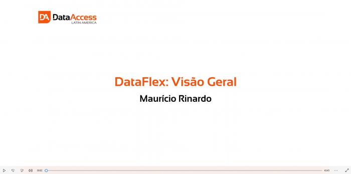 DataFlexVisaoGeral