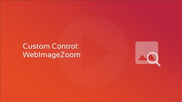 custom control webimagezoom