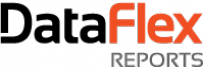 Logo do DataFlex Reports